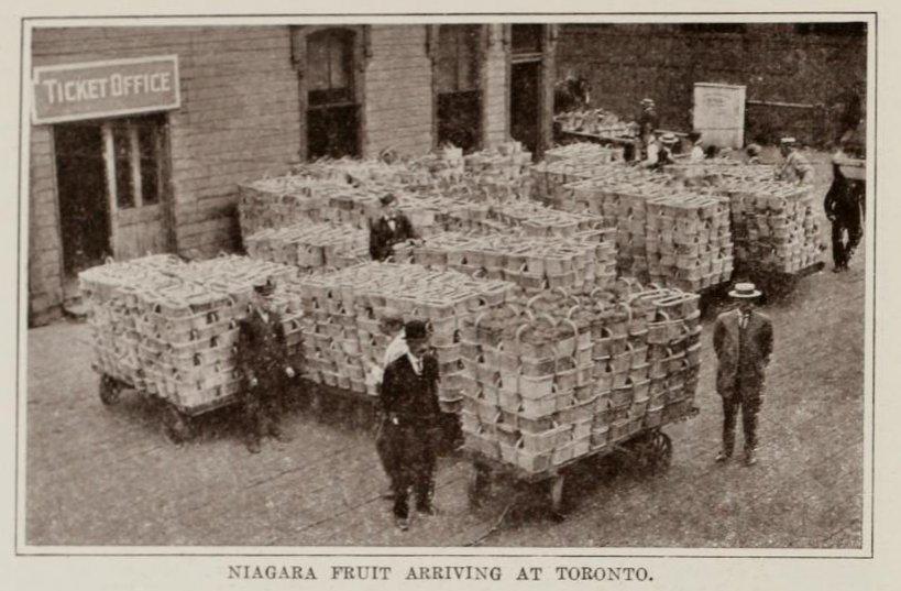 ruitfromtheiagararegionfordistribution,ca.1914