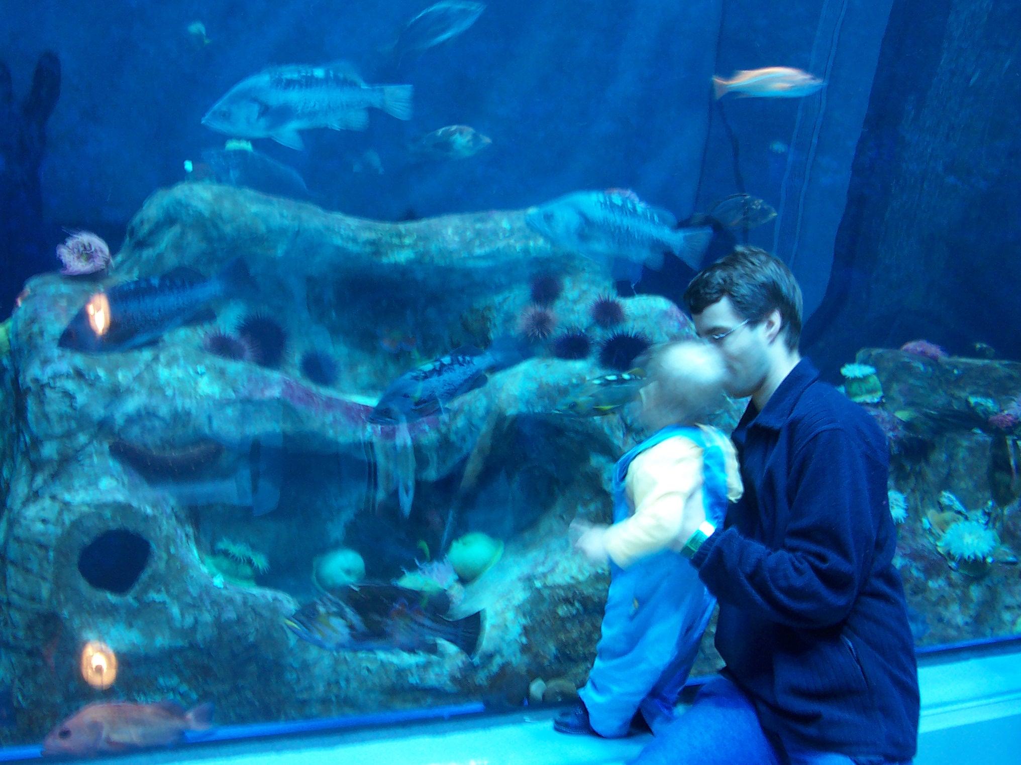 Coupons aquarium quebec