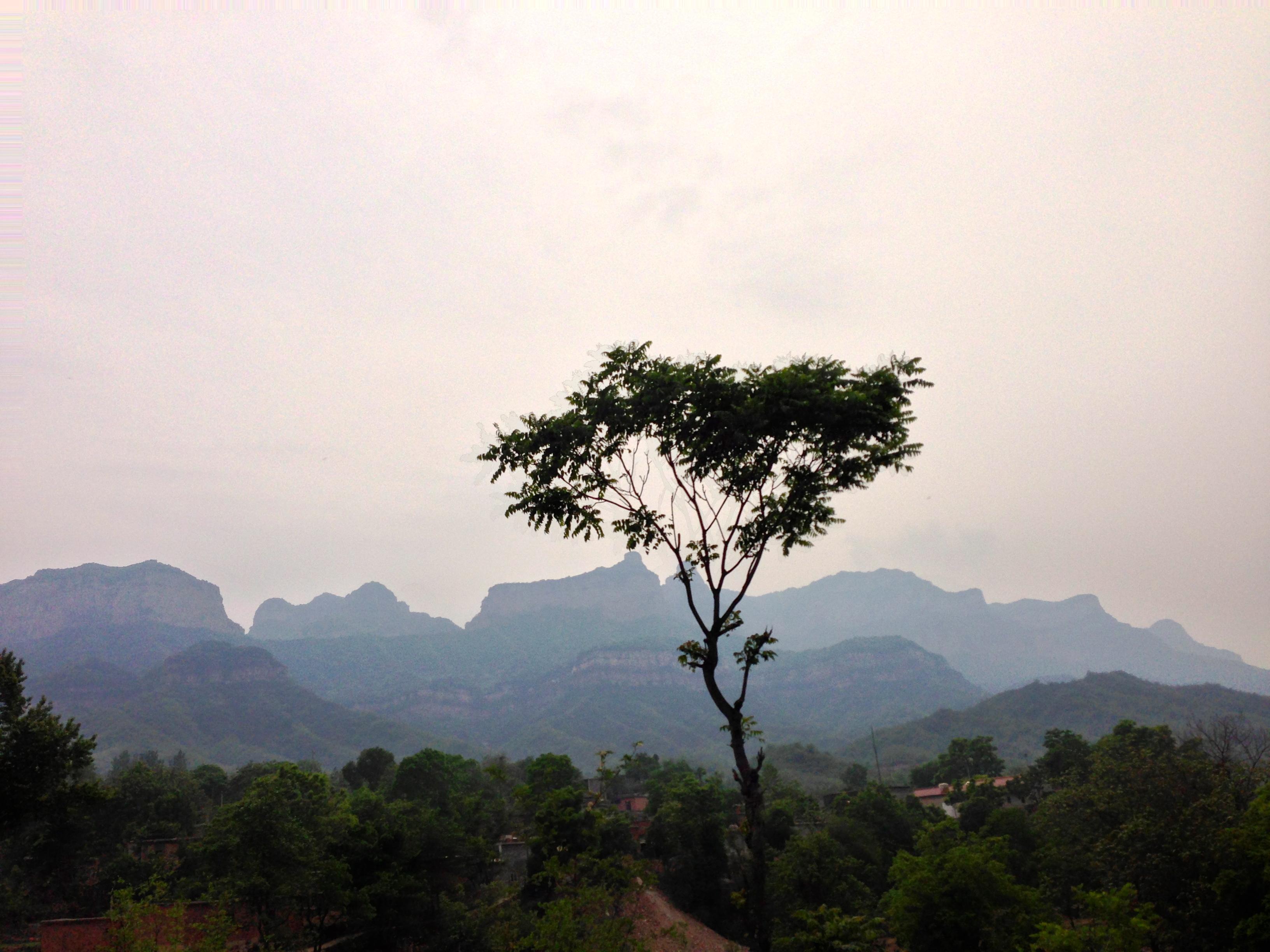 File:Pingshan, Shijiazhuang, Hebei, China - panoramio (5).jpg ...