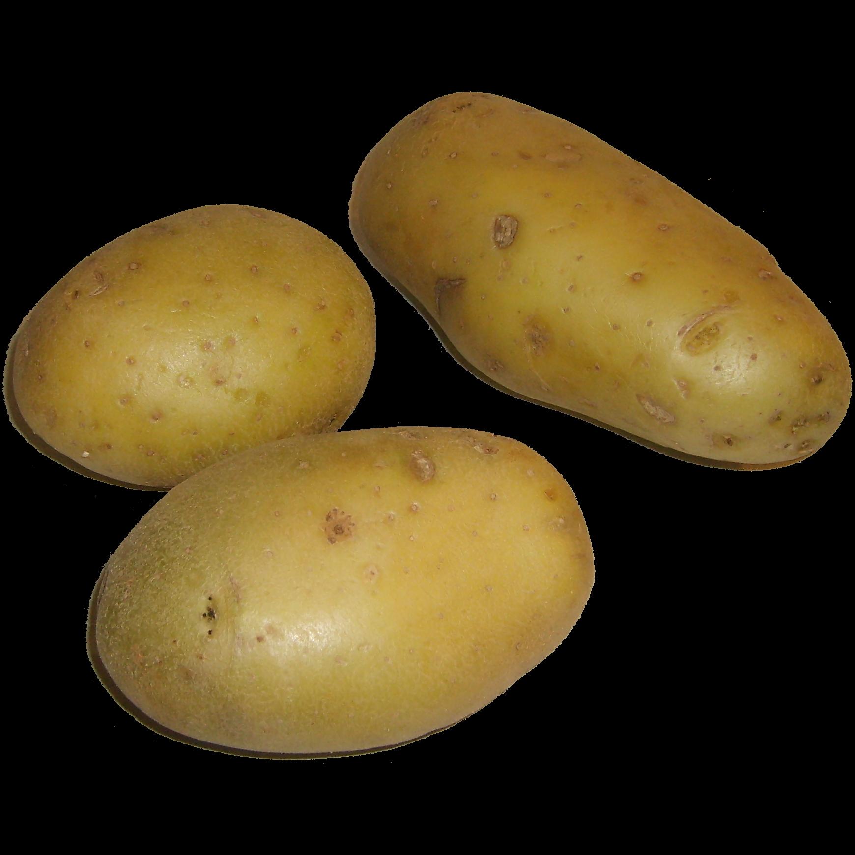 Pommes De Terre Cuites Tomates Et Fromage Blanc Cakes Sal Ef Bf Bds