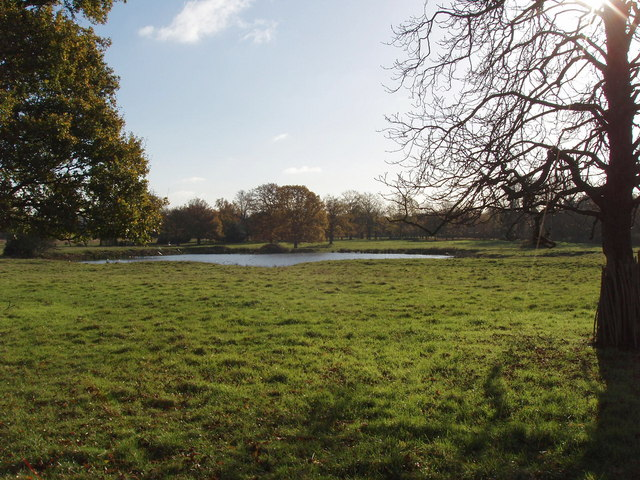 Pond in Osterley Park - geograph.org.uk - 621343