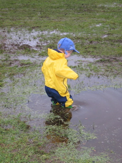 File:Puddle.jpg
