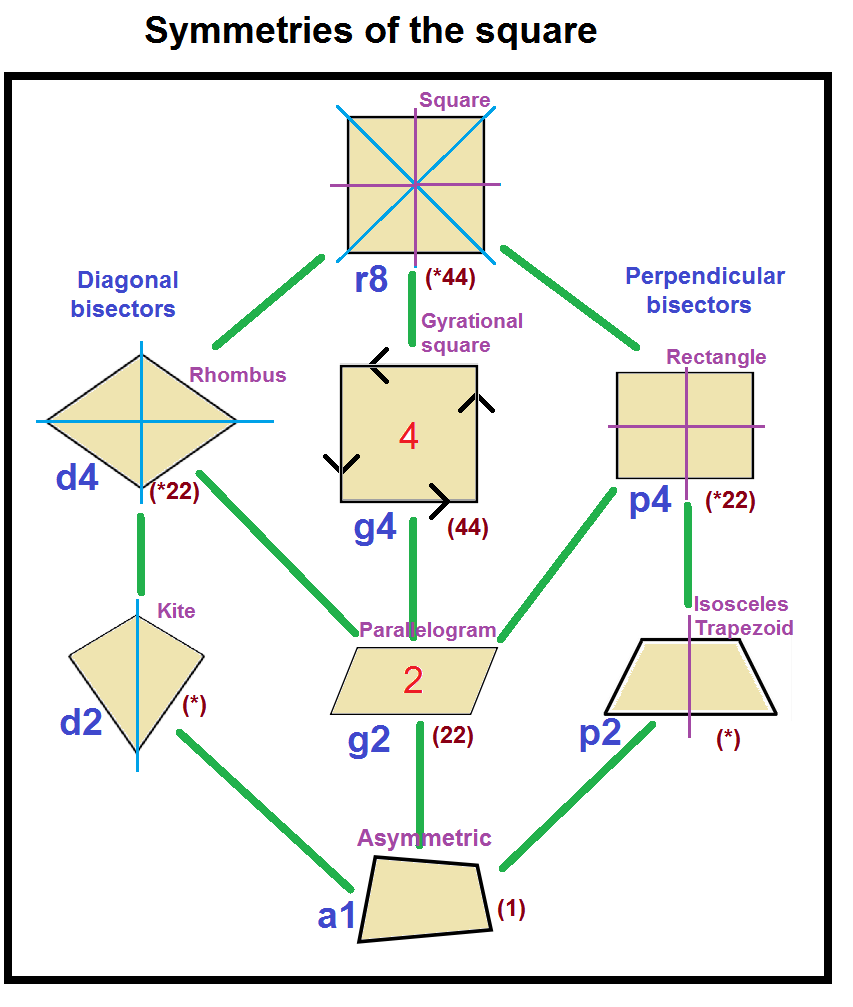 Description Quadrilateral tree pngQuadrilateral Square