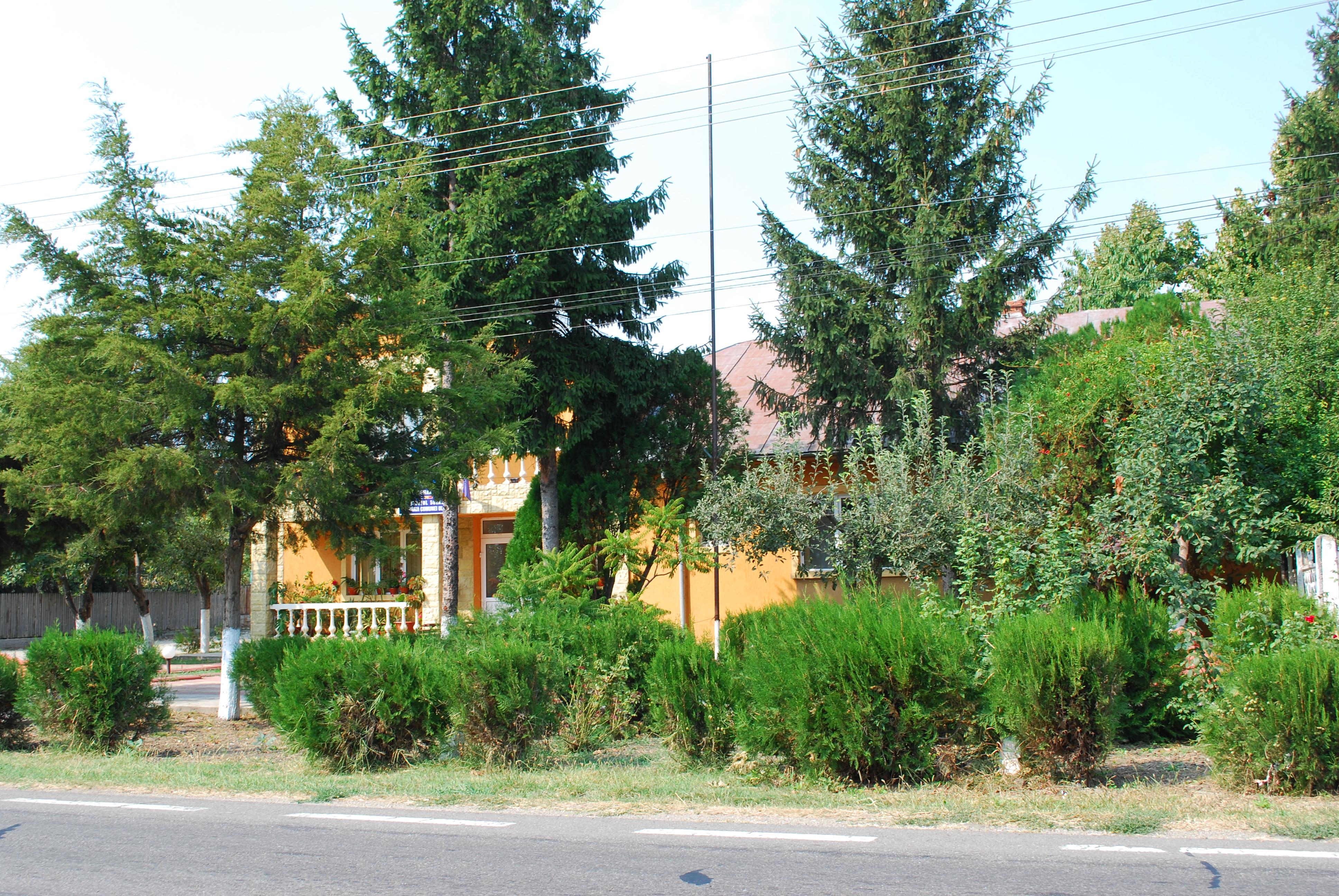 Comuna Ulmeni Buzău Wikipedia