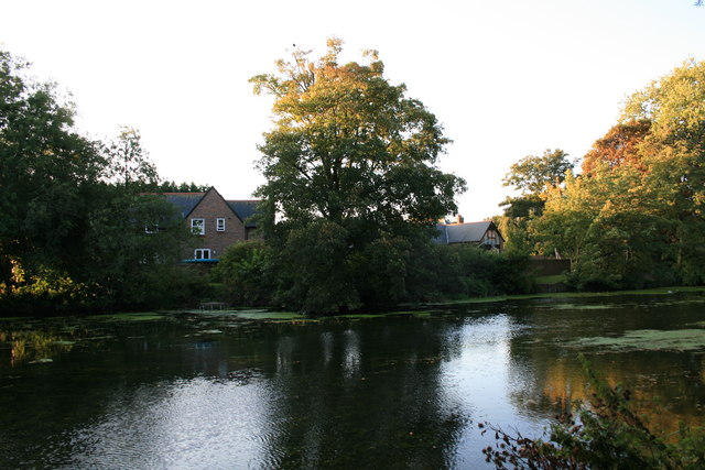 River Stour, Blandford Forum - geograph.org.uk - 1501885