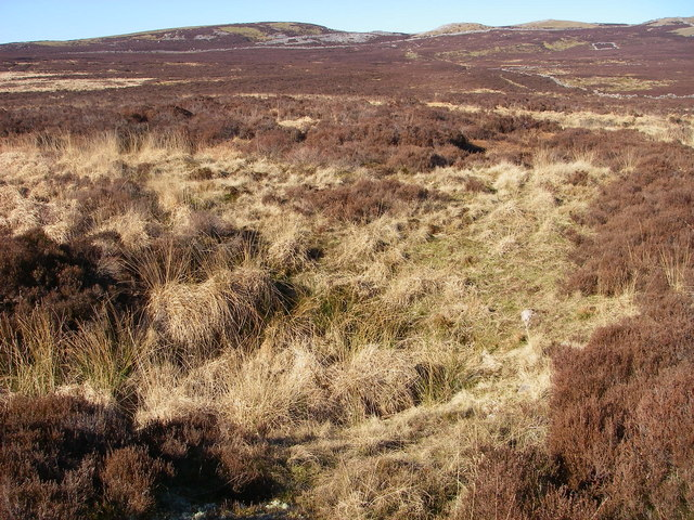 File:Shakehole-infested moorland on Beacons Way - geograph.org.uk - 693563.jpg
