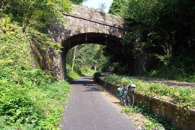 File:Shaugh Bridge Platform - geograph.org.uk - 43162.jpg
