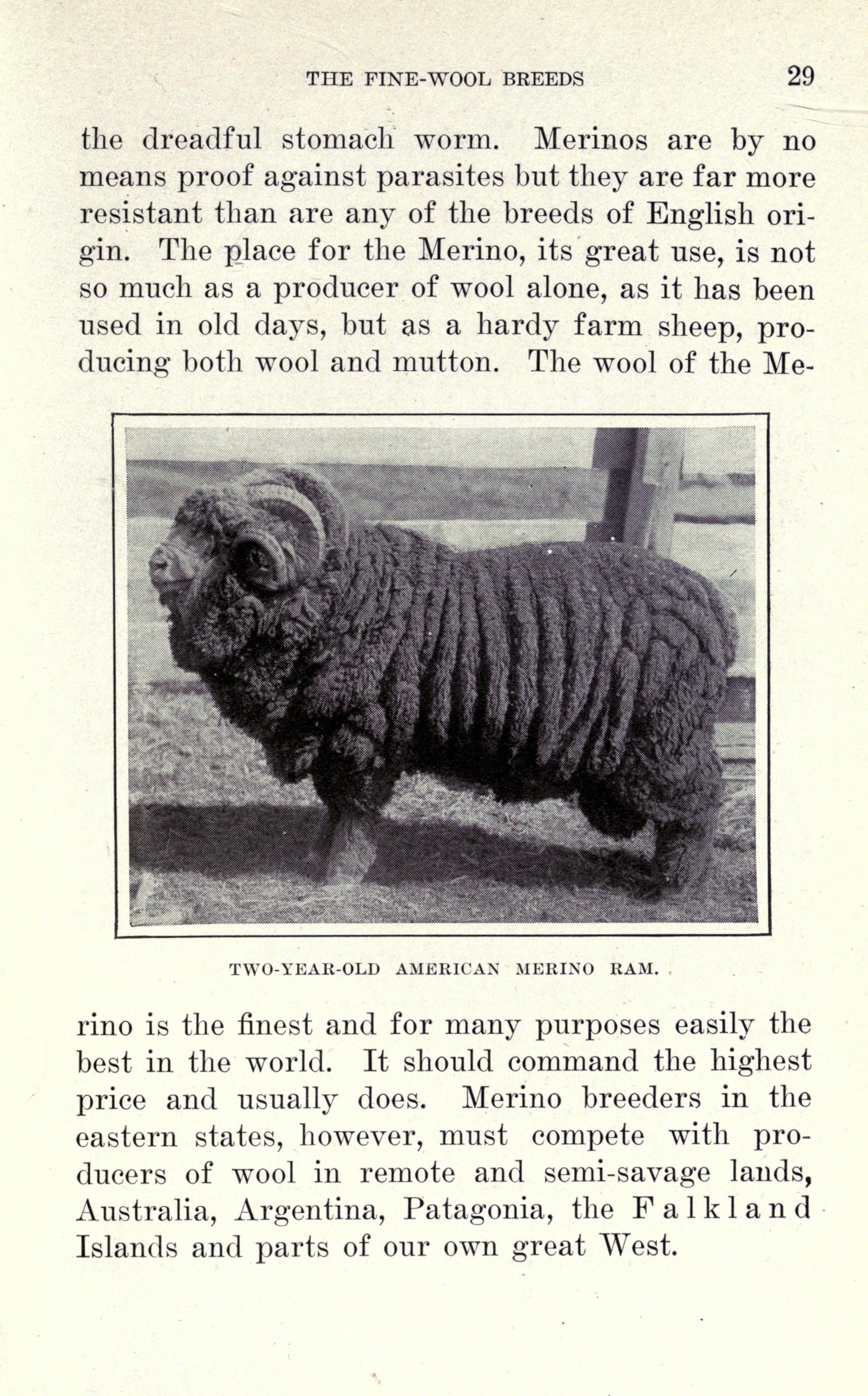 File:Sheep farming in America (Page 29) BHL20149728 jpg