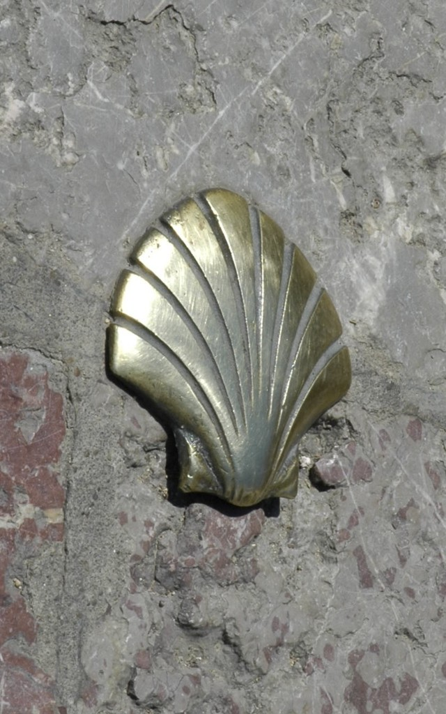 https://upload.wikimedia.org/wikipedia/commons/6/61/Spain_Leon_-_Santiago_Shell.jpg