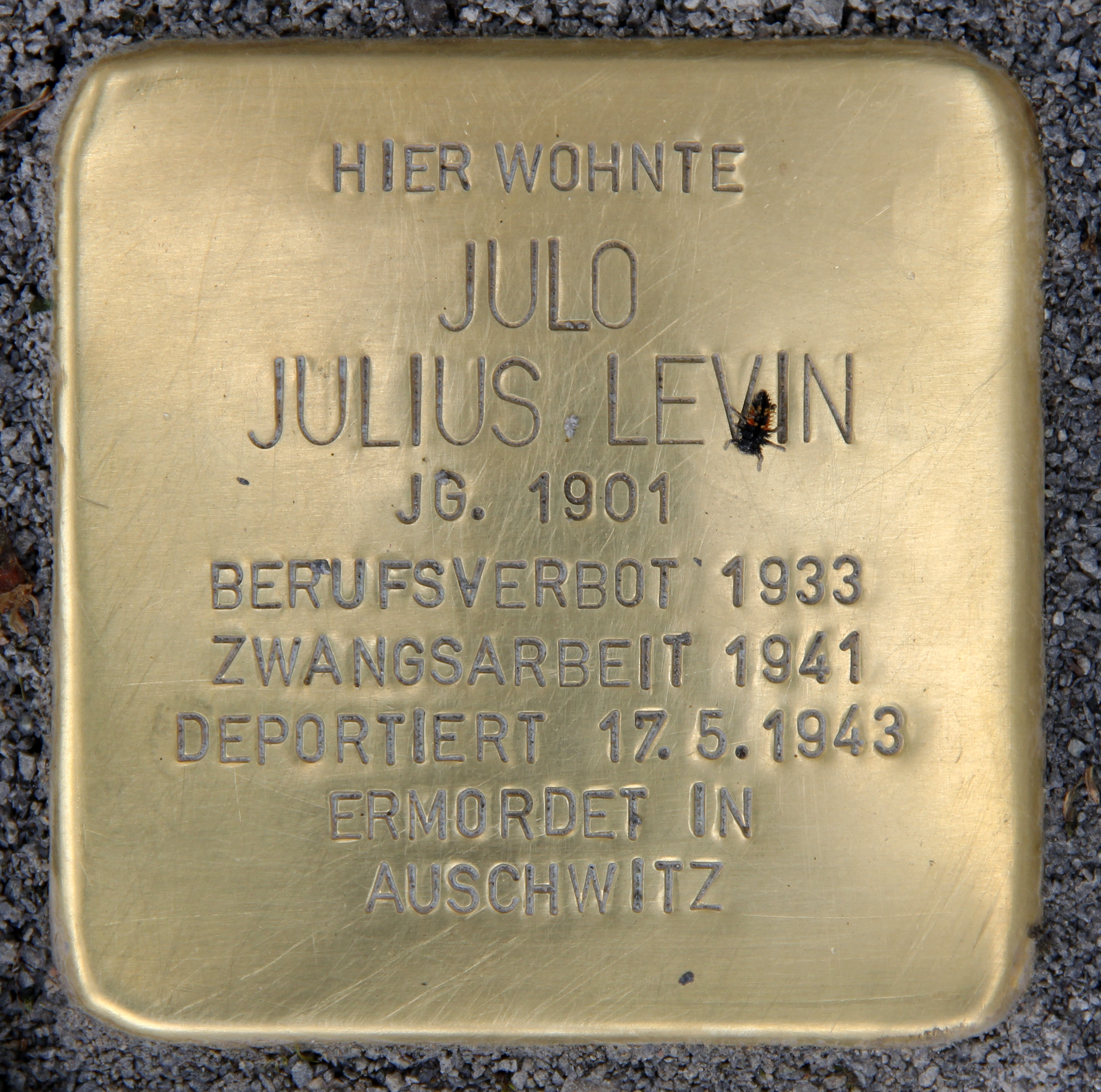 Stolperstein Seydelstr 7 (Mitte) Julo Julius Levin.jpg
