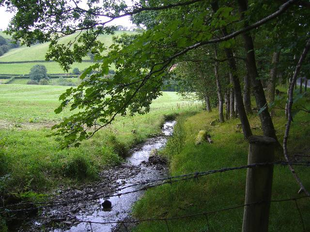 Stream running alongside the Severn Way - geograph.org.uk - 532331