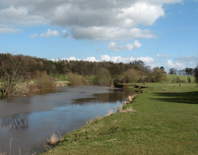 The Wharfe approaching Tadcaster - geograph.org.uk - 722577