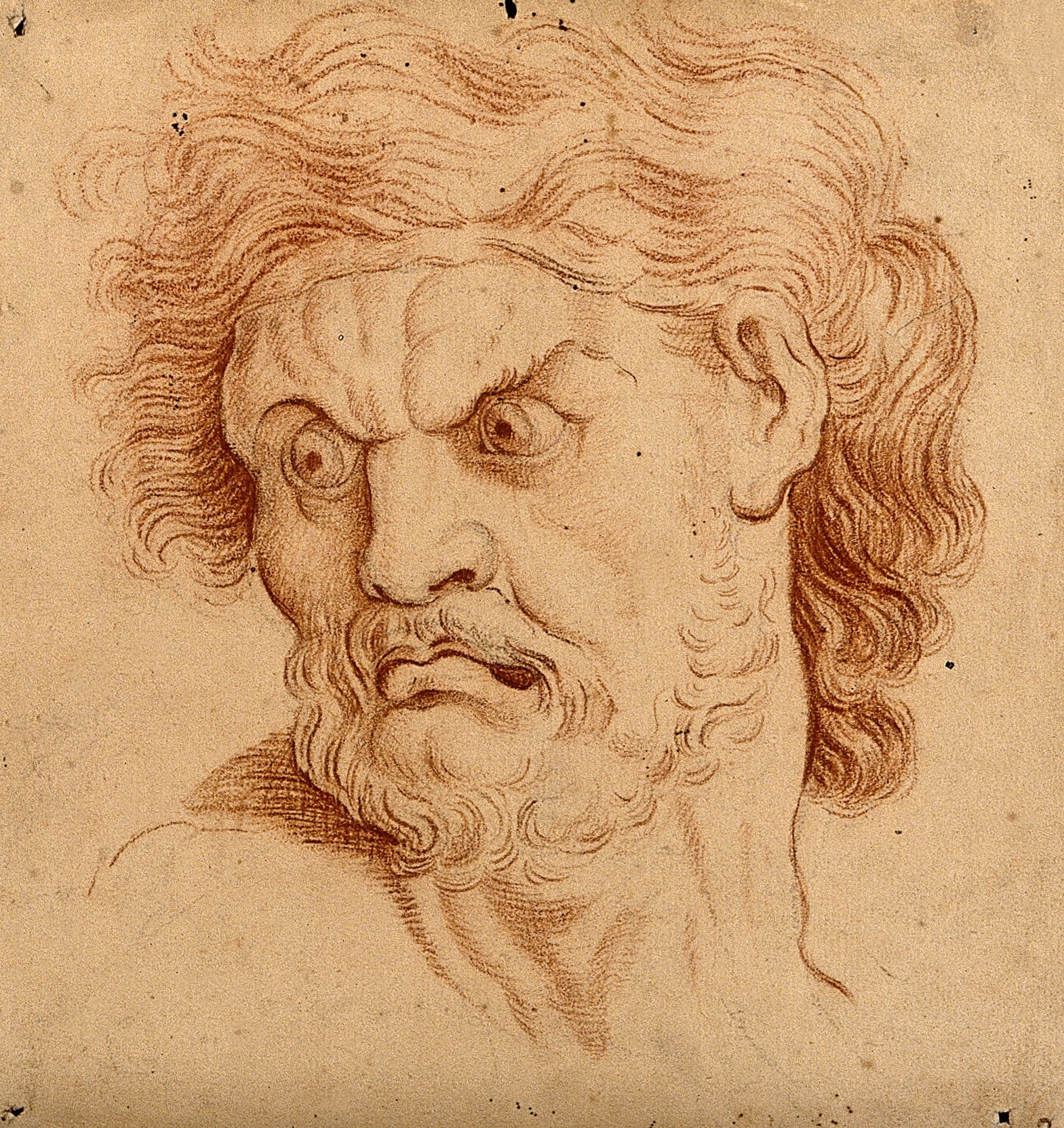 Drawing of the face of an angry man by C. Le Brun sometime in the 18th century
