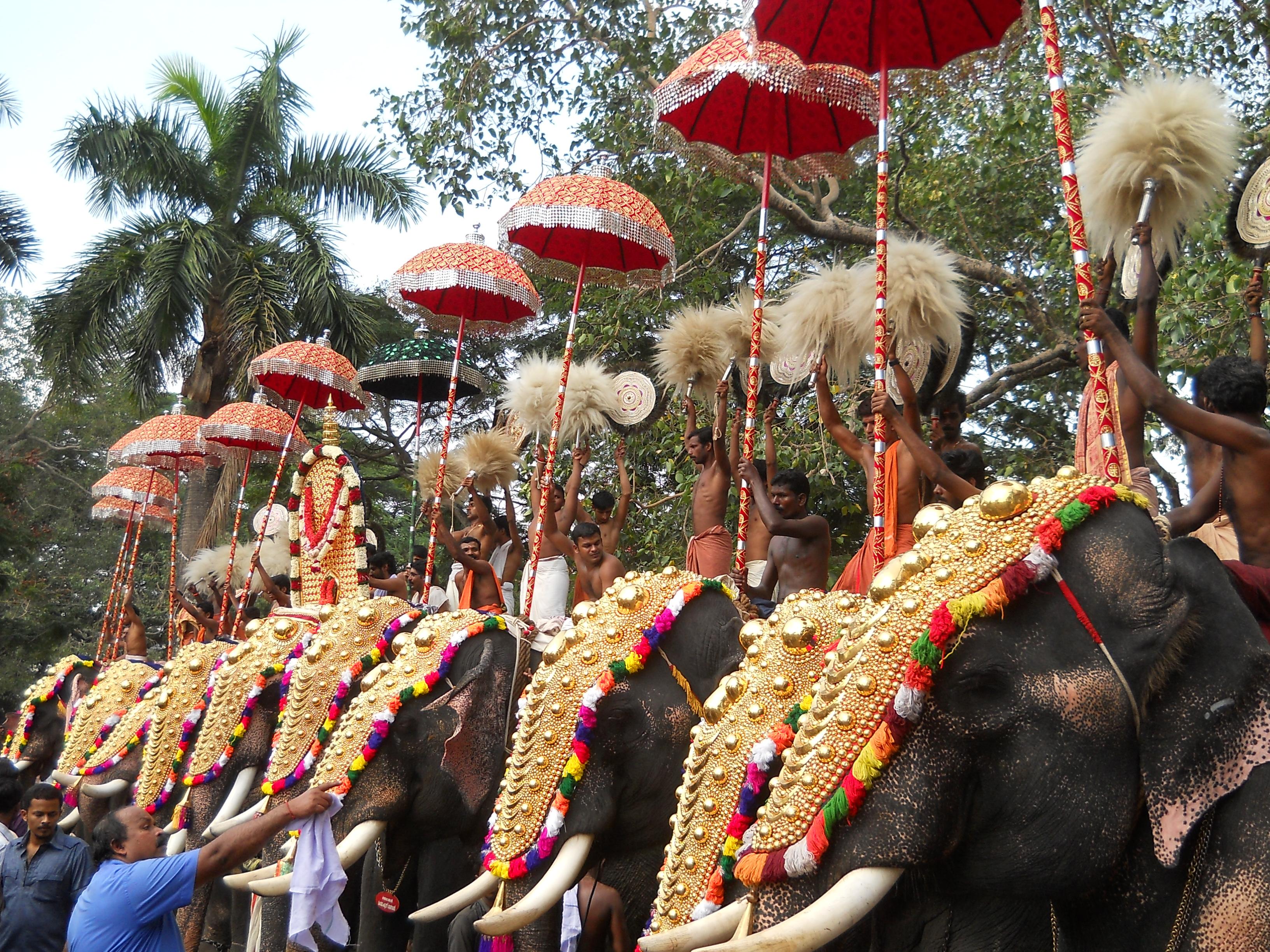 File:Thrissur Pooram 2011 DSCN3002.JPG - Wikimedia Commons