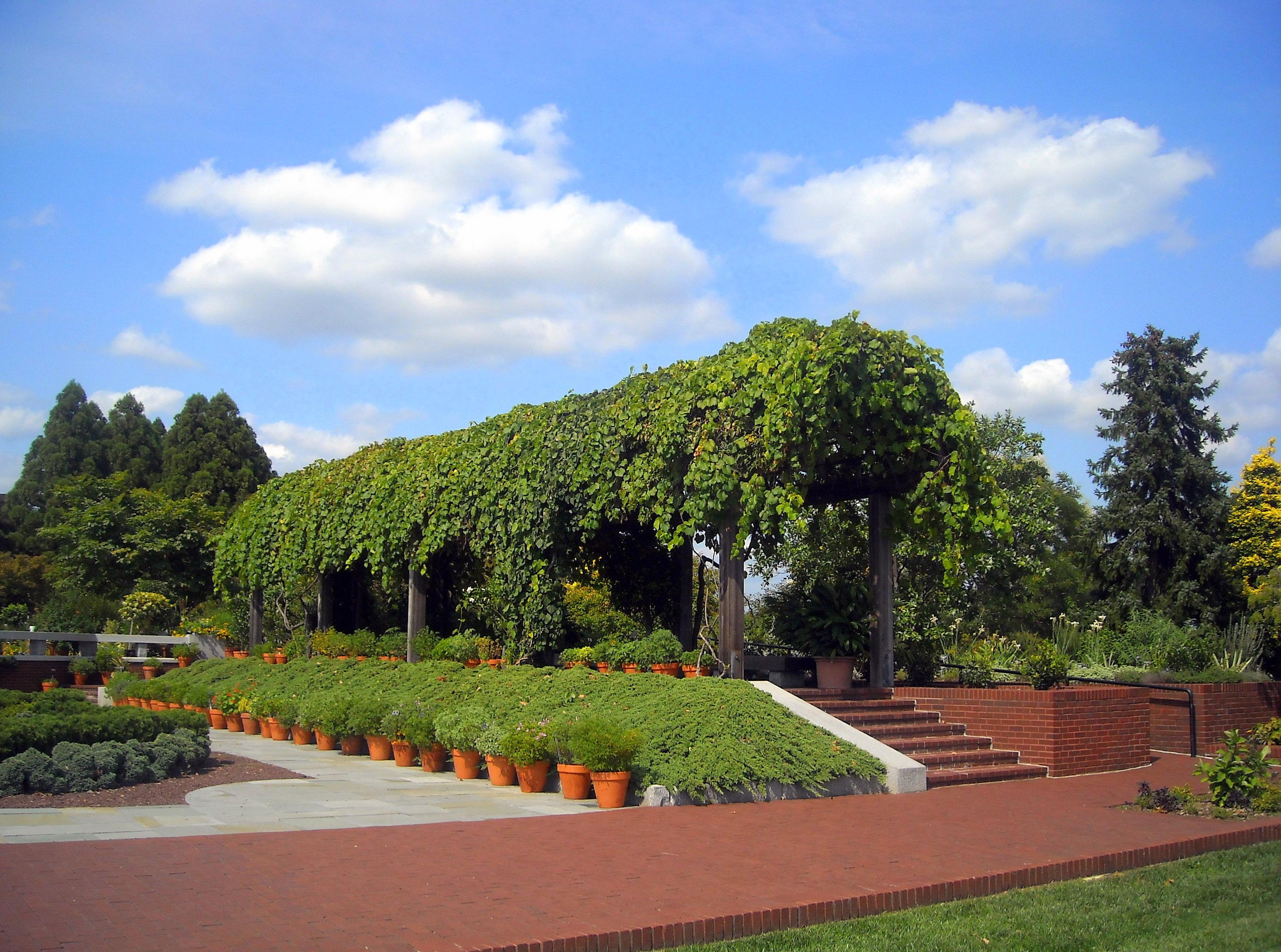 FileUnited States National Arboretum Garden