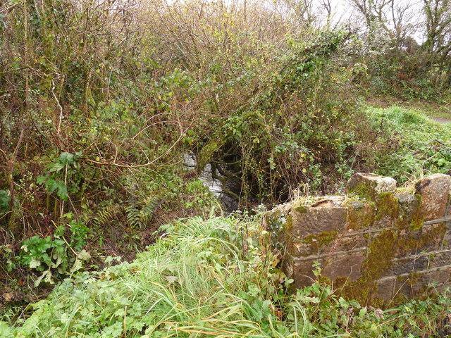 File:Upstream from a bridge near Brimford cross - geograph.org.uk - 1576890.jpg