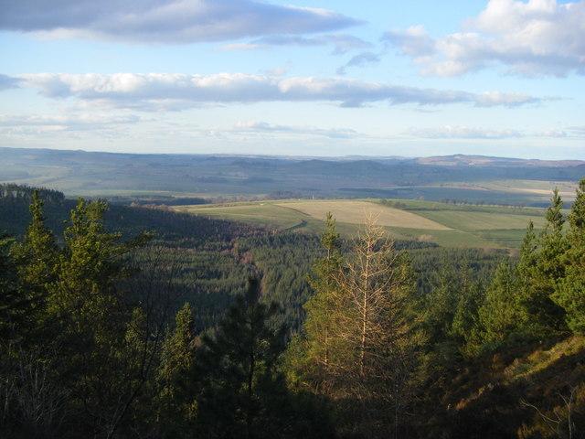 View of Thrunton Wood from Thrunton Crag - geograph.org.uk - 1199884