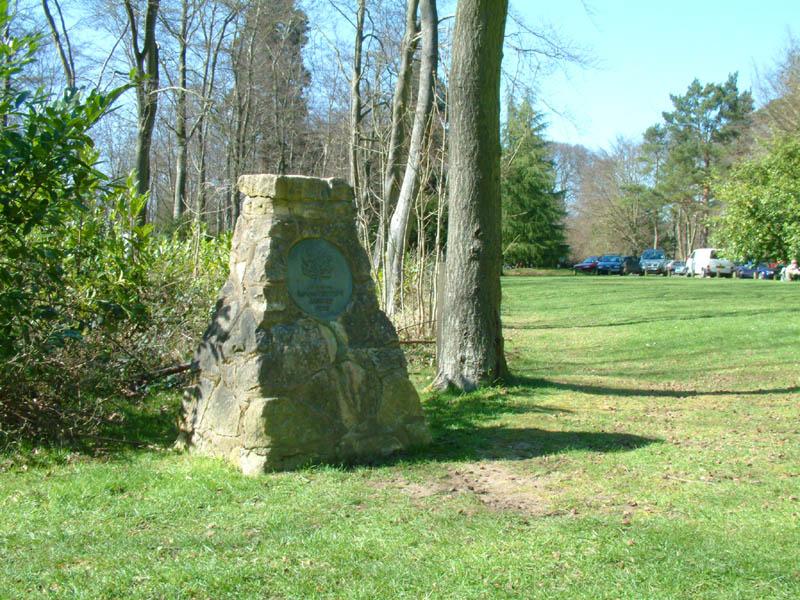 Wendover Woods