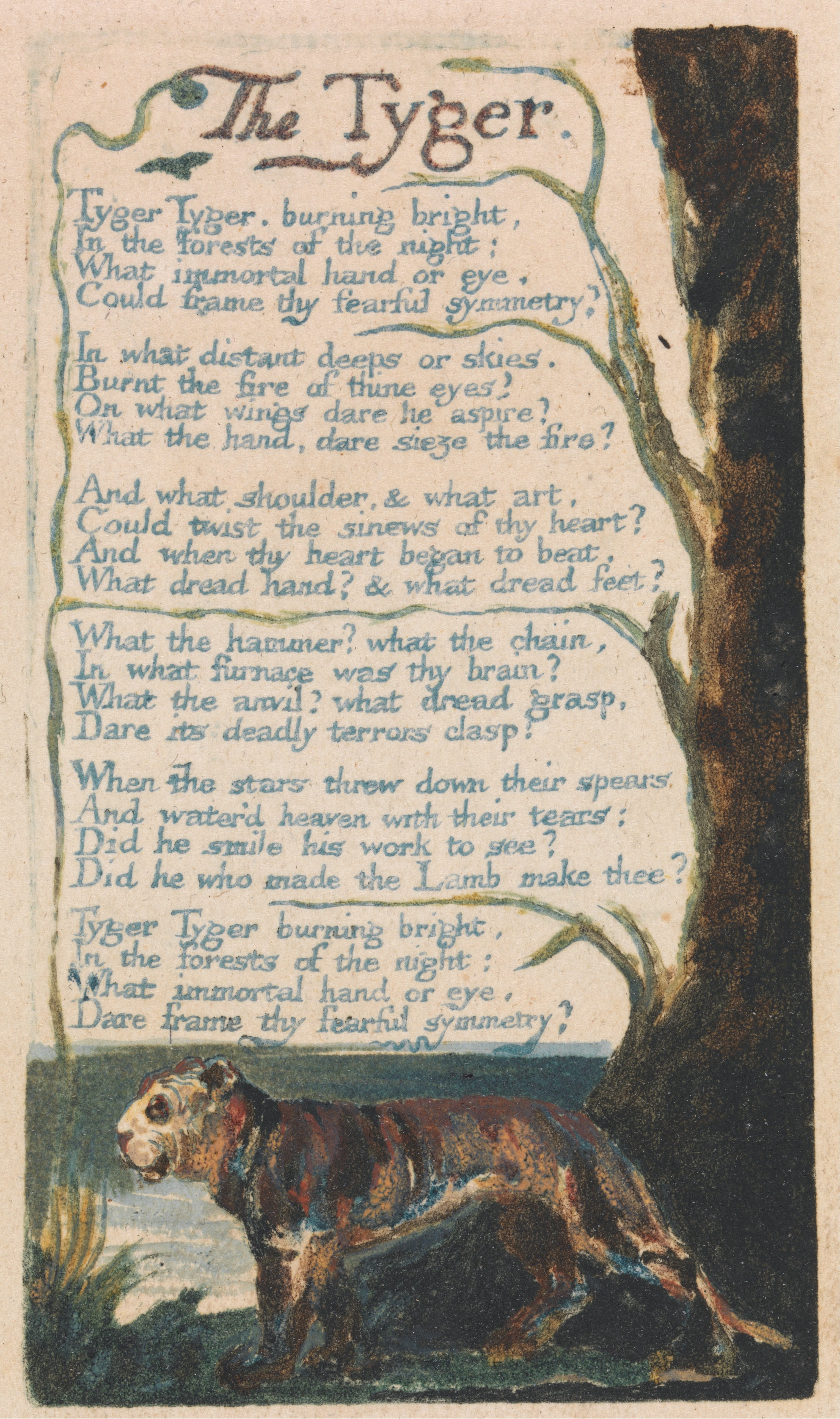 tiger by william blake Figures of speech in the tiger by william blake in the poem the tiger, the author, william blake, is describing one of the most powerful and beautiful creatures and praising god's work in the process by using symbols and different figures of speech.