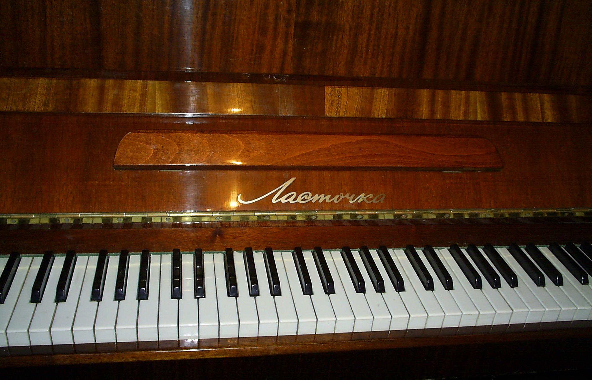 Красивое фото руки на пианино