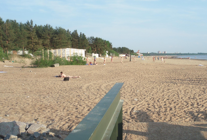 13 пляжей в городе и на заливе The Village 524