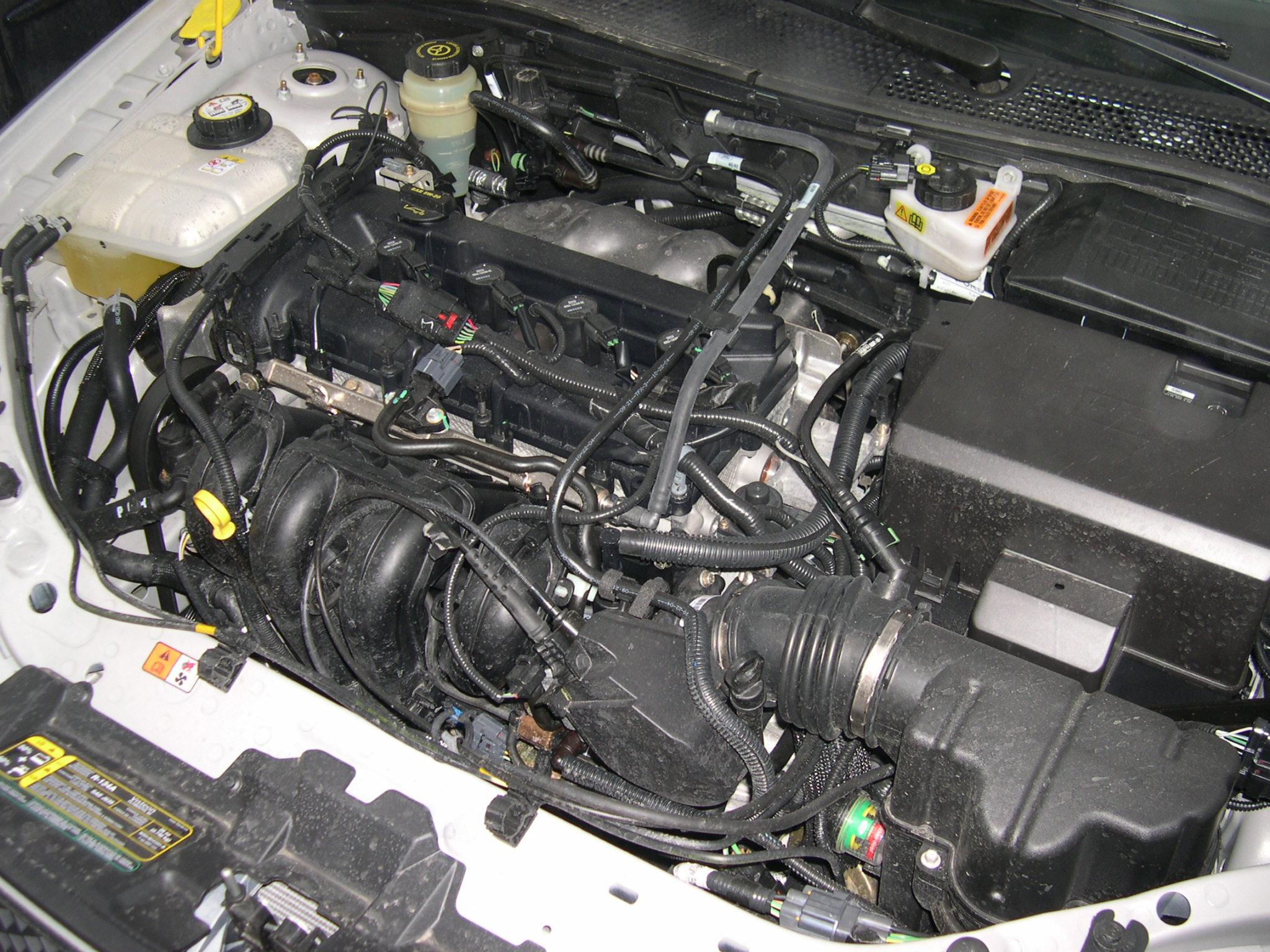 File 2005 Ford Focus ZX4 SE engine on taurus dpfe sensor location