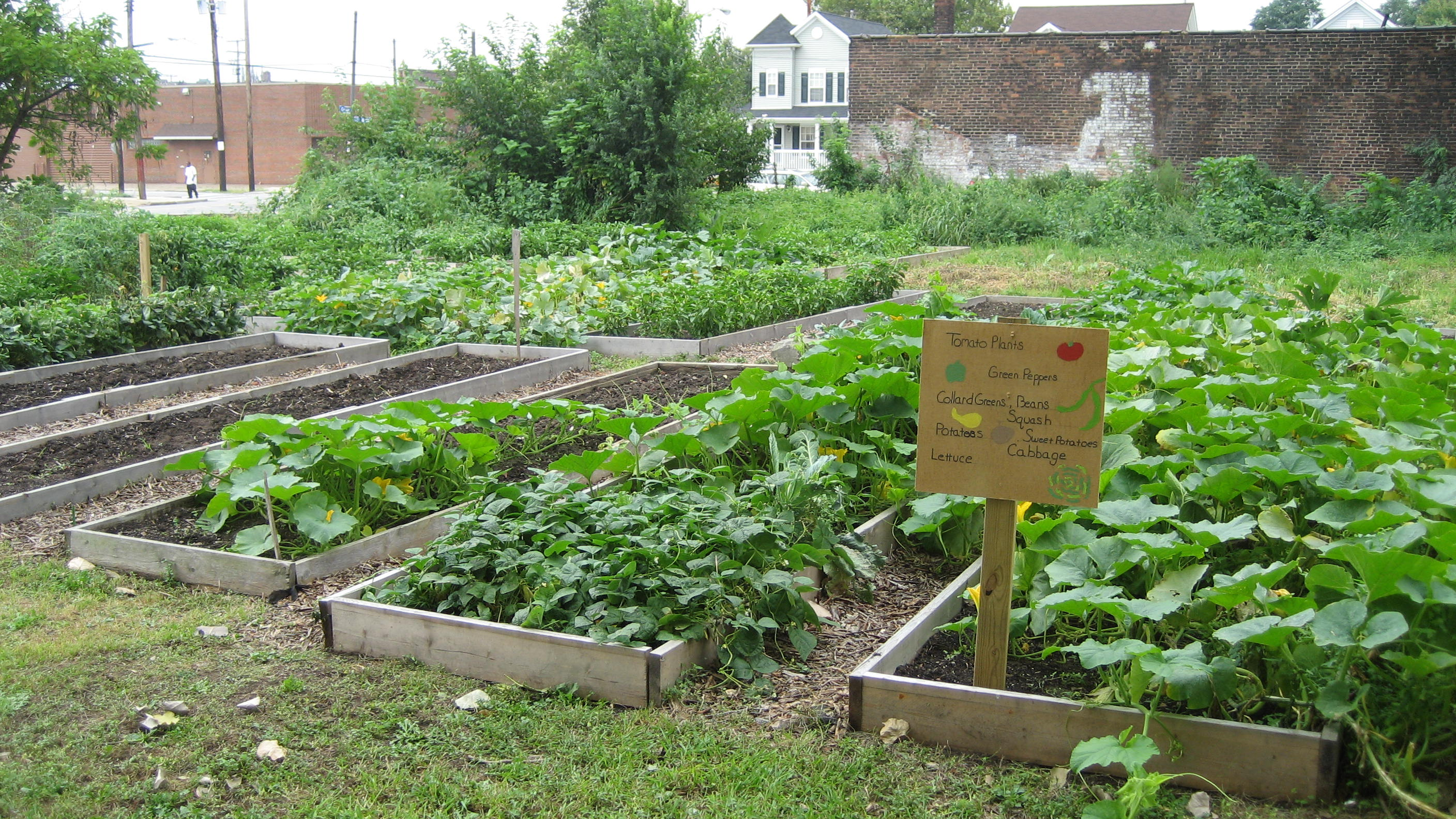 Green Raised Beds