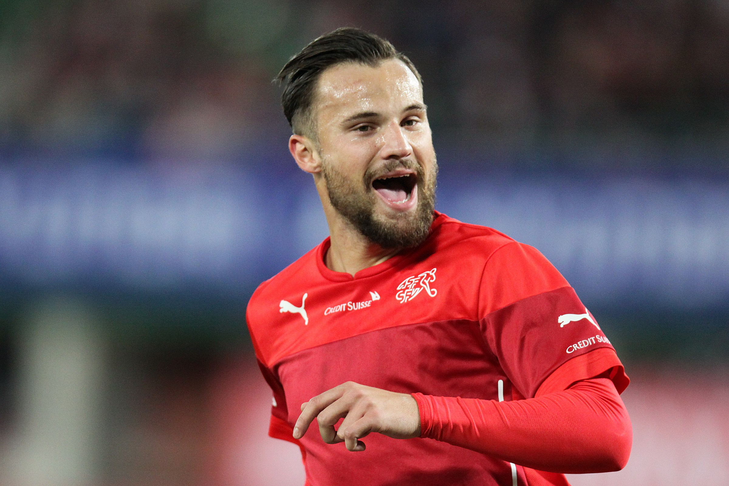 Image result for seferovic