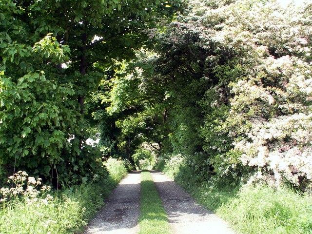 Barnsley Boundary Walk - geograph.org.uk - 834000