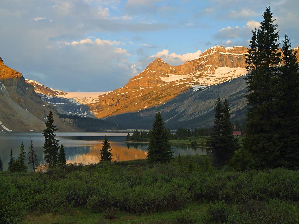 Banff National Park Wildlife Tours
