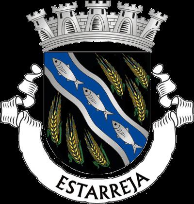 Resultado de imagem para Município, que o concelho de Estarreja