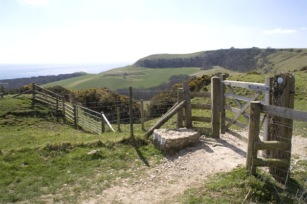 Footpath to Swyre Head - geograph.org.uk - 160988