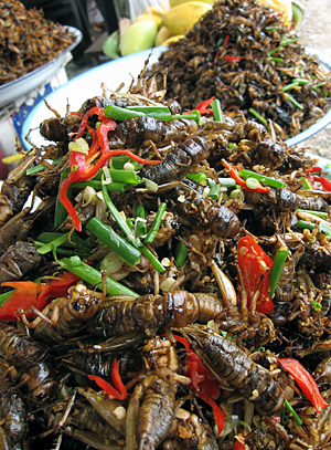 Fried insects for sale in Cambodia