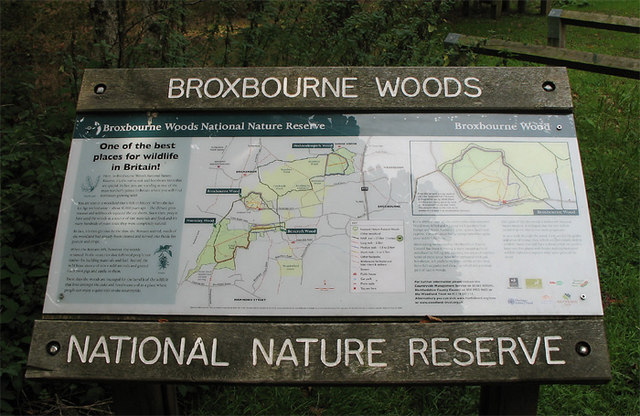 Guide to Broxbourne Woods National Nature Reserve - geograph.org.uk - 239135