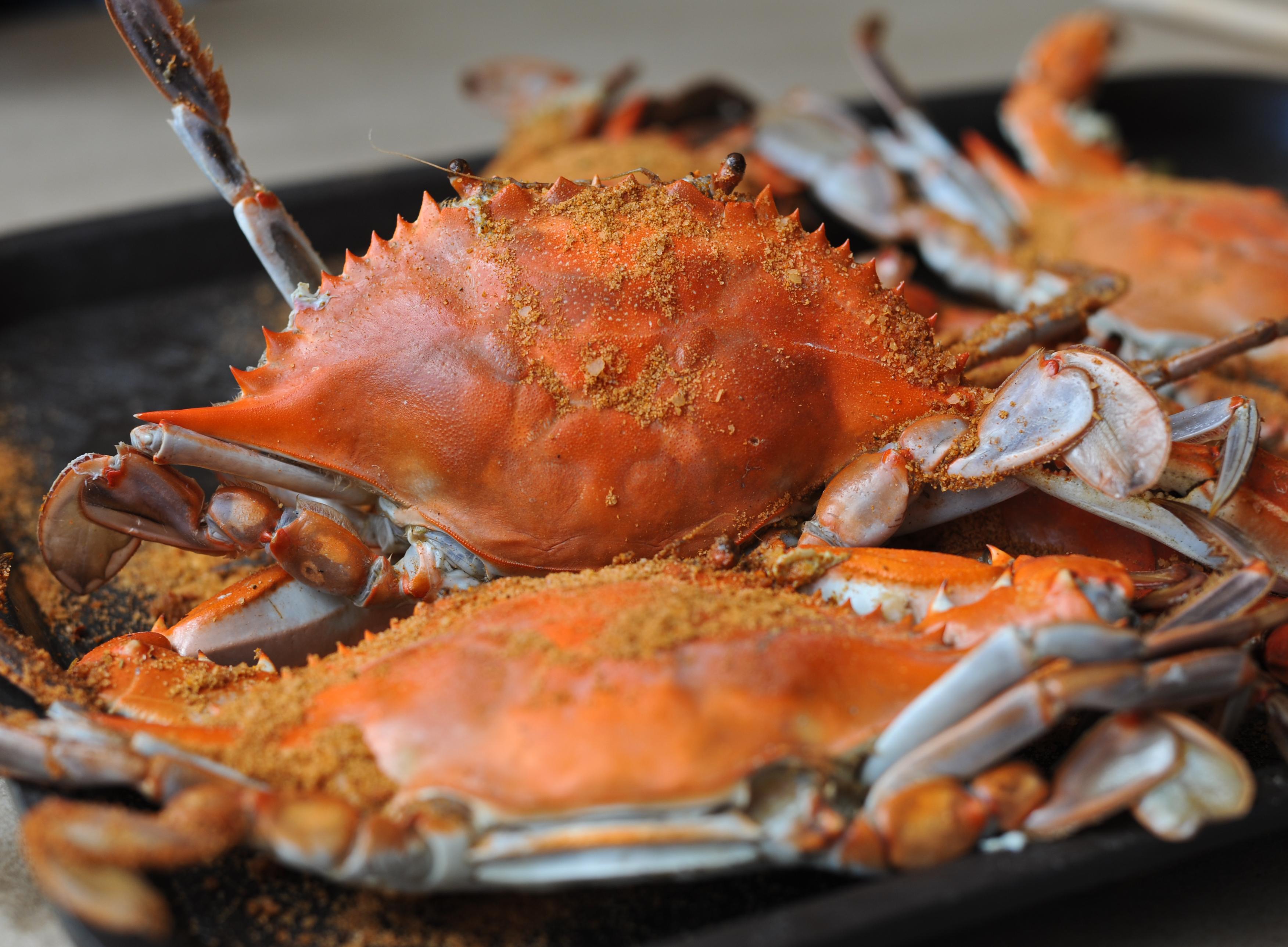 Annapolis Seafood Crab Cakes