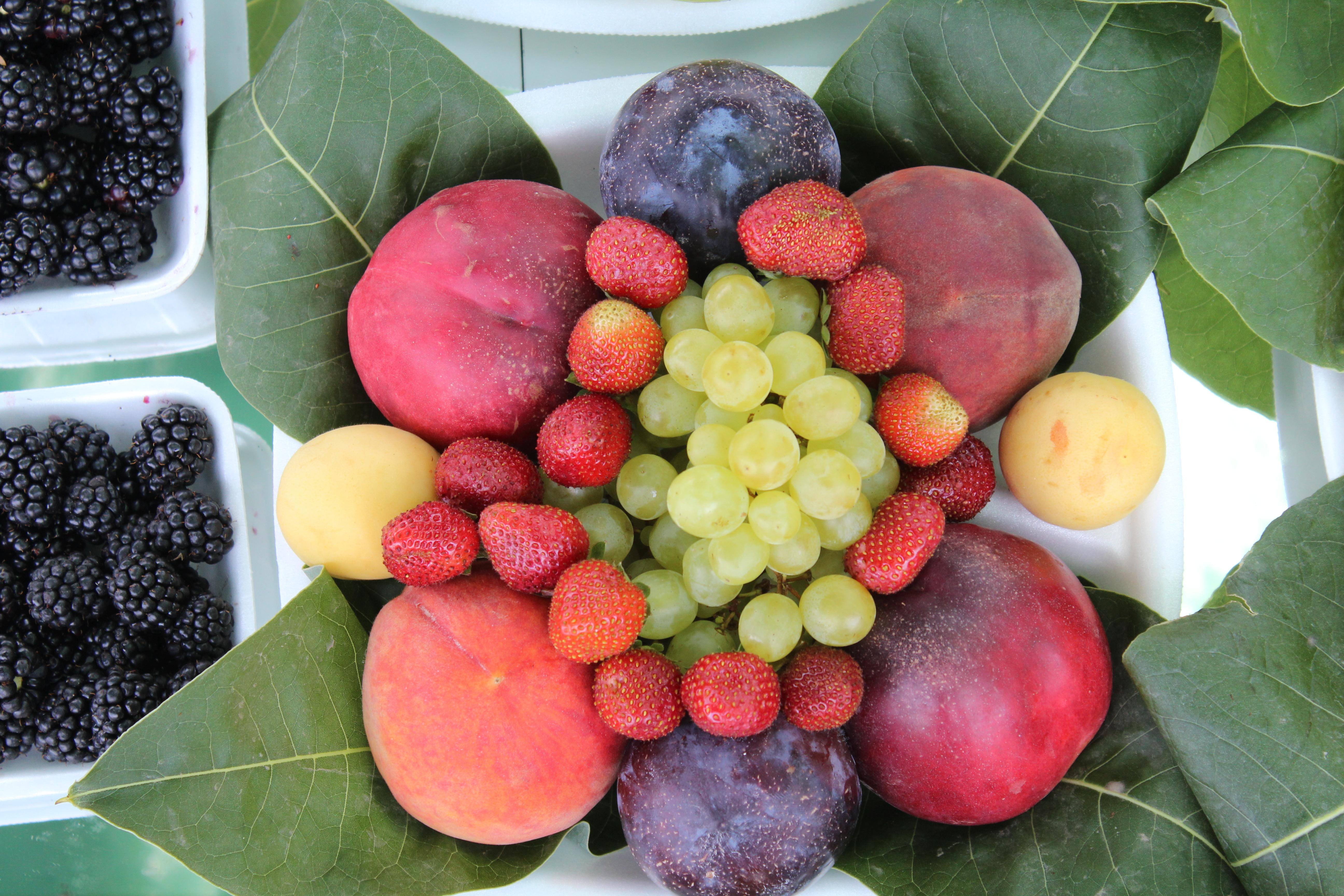 ixedfruit