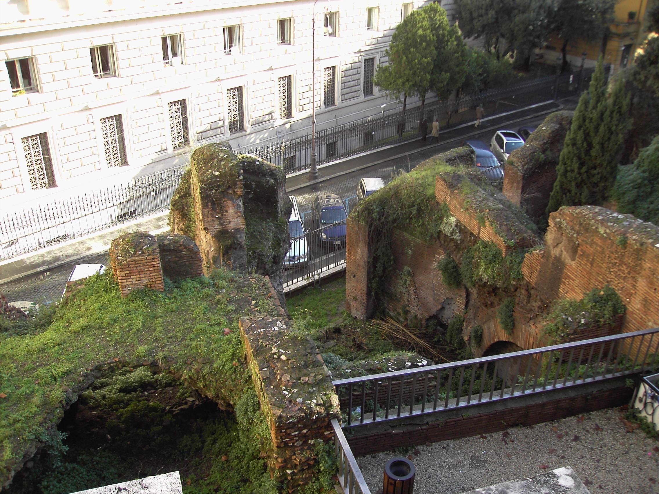 Villa Aldobrandini Roma Ginko