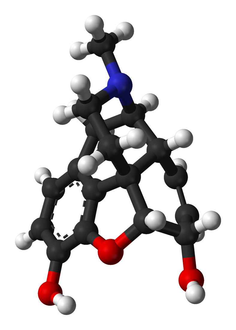 morphine molecule