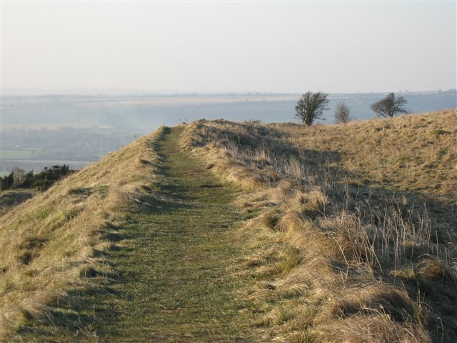 Old Winchester Hill - geograph.org.uk - 1096965