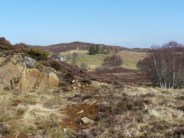 On the great Glen Way - geograph.org.uk - 1234272