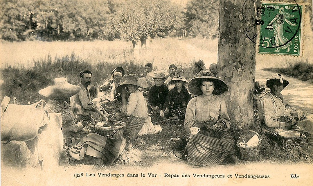 FileRepas de vendanges dans le Var Draguignanjpg