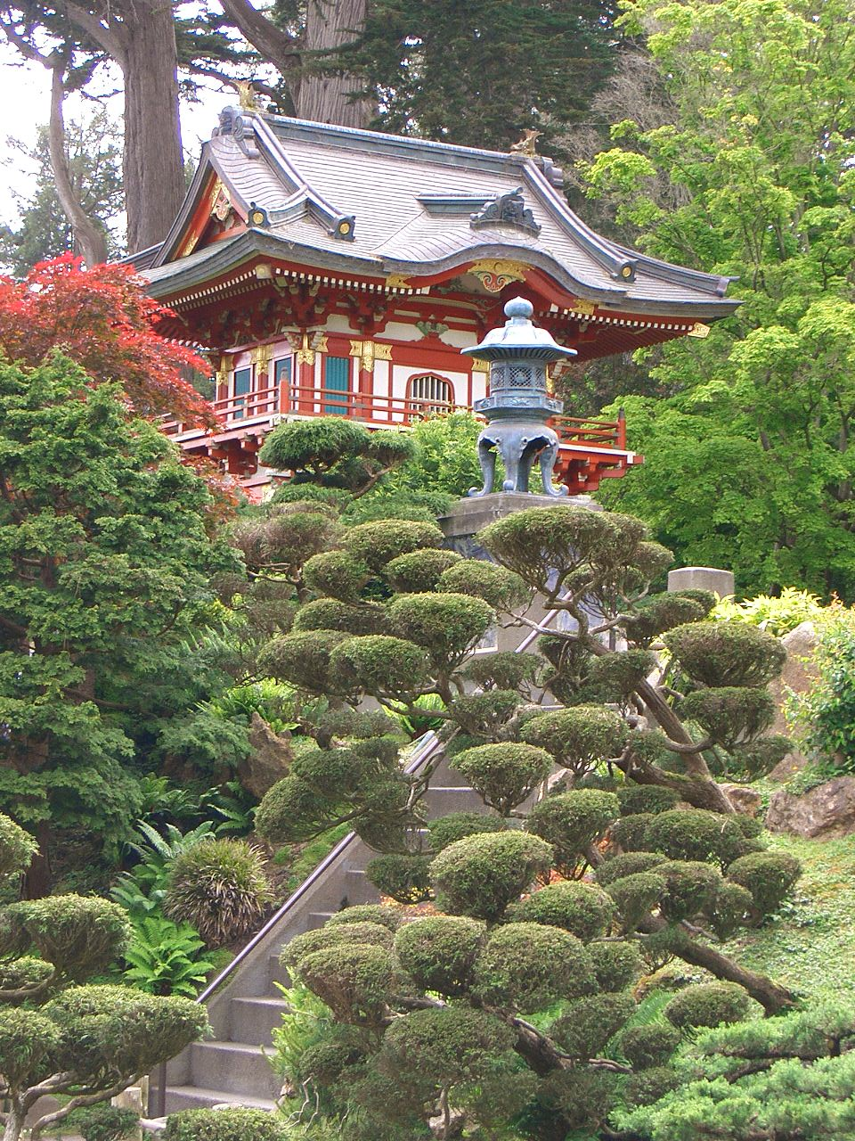 File sf japanese garden11 jpg - Japanese tea garden san francisco ...