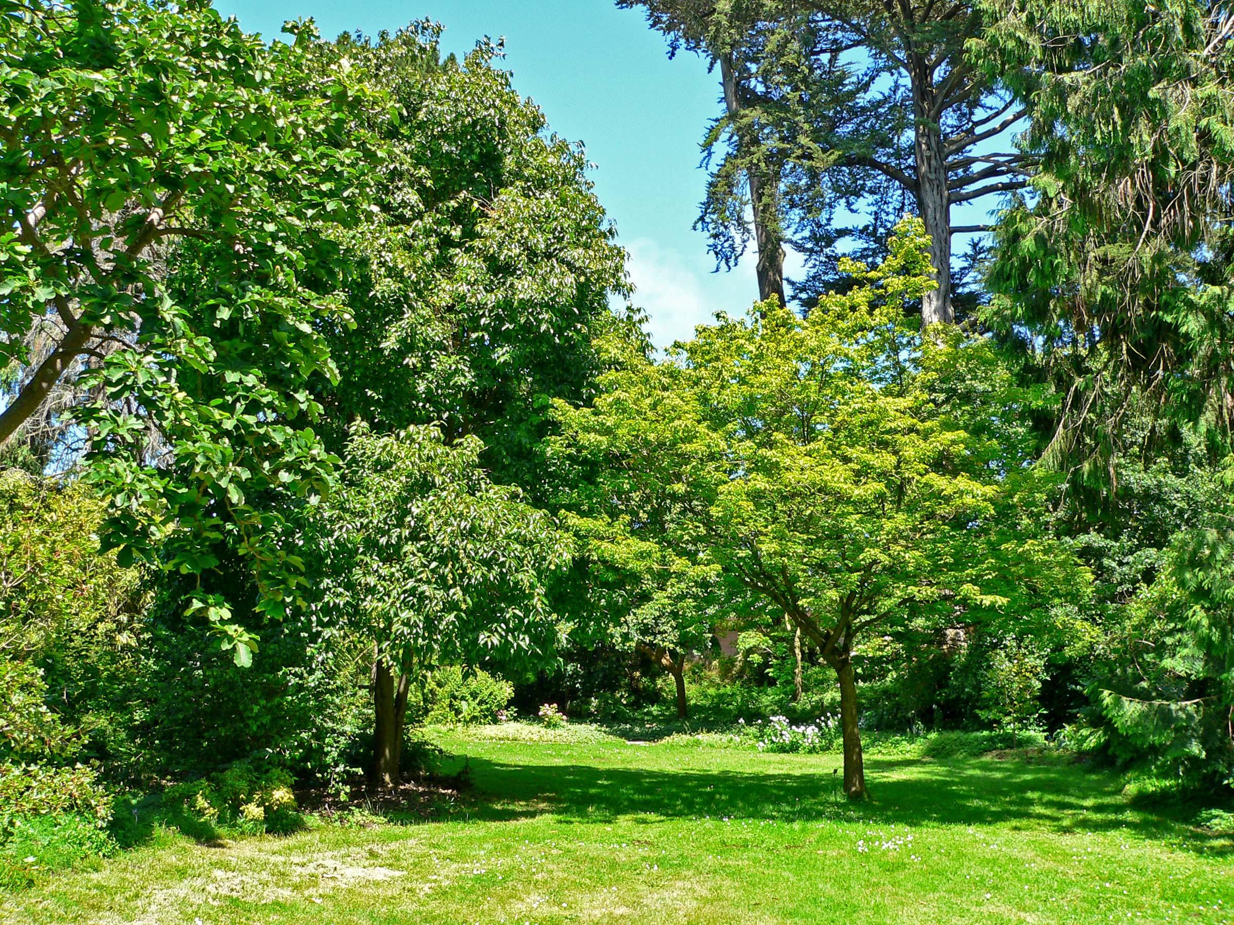 File San Francisco Botanical Garden Wikimedia Commons