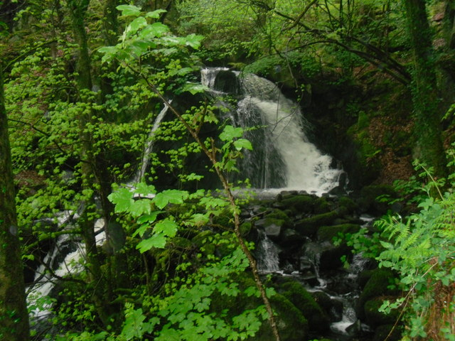 Waterfall in the Arthog Woods - geograph.org.uk - 1310527