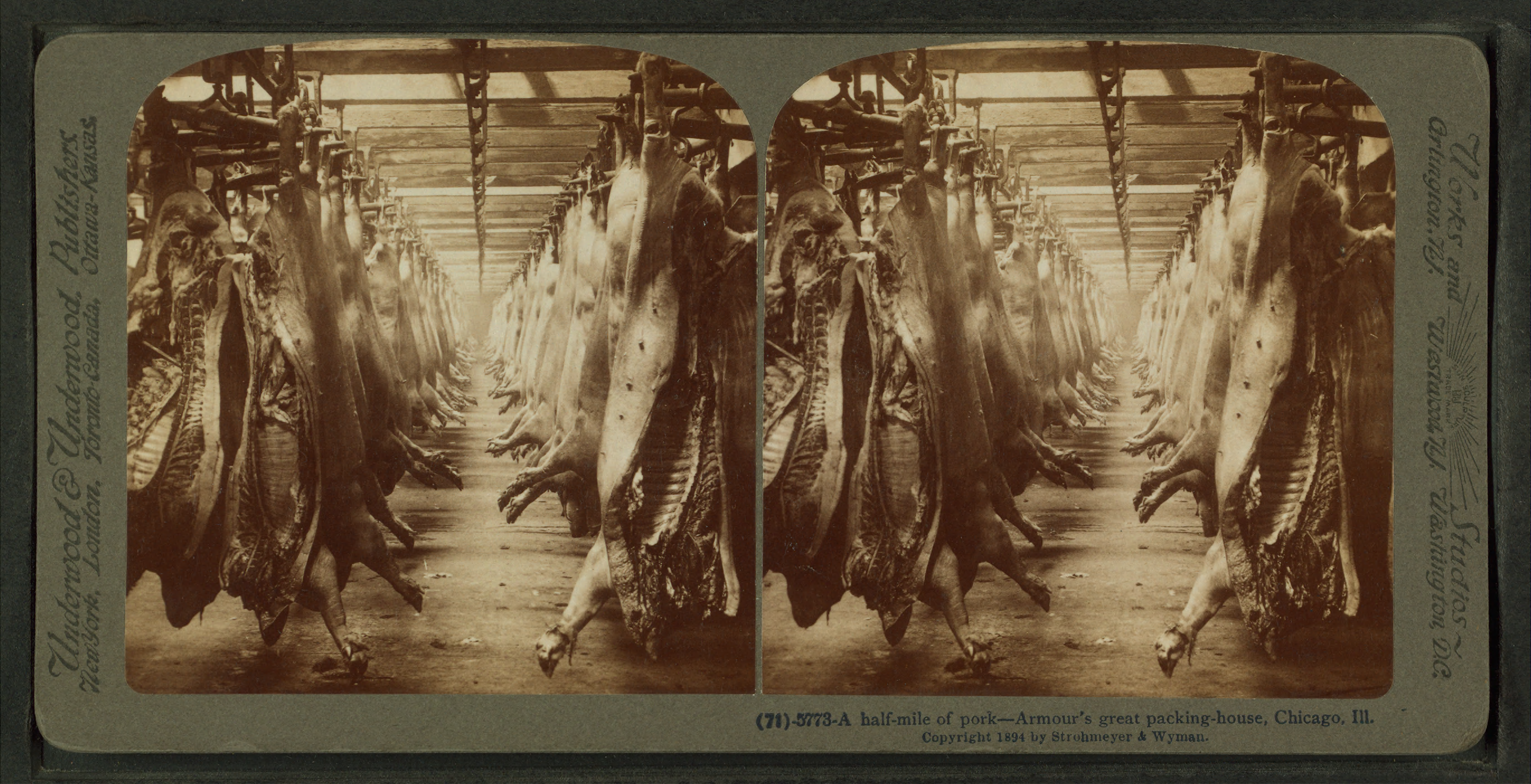http://upload.wikimedia.org/wikipedia/commons/6/63/A_half-mile_of_pork%2C_Armour%27s_great_packing_house%2C_Chicago%2C_Ill%2C_from_Robert_N._Dennis_collection_of_stereoscopic_views.png