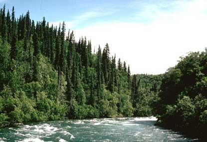 File:Alagnak River Rapids.jpg