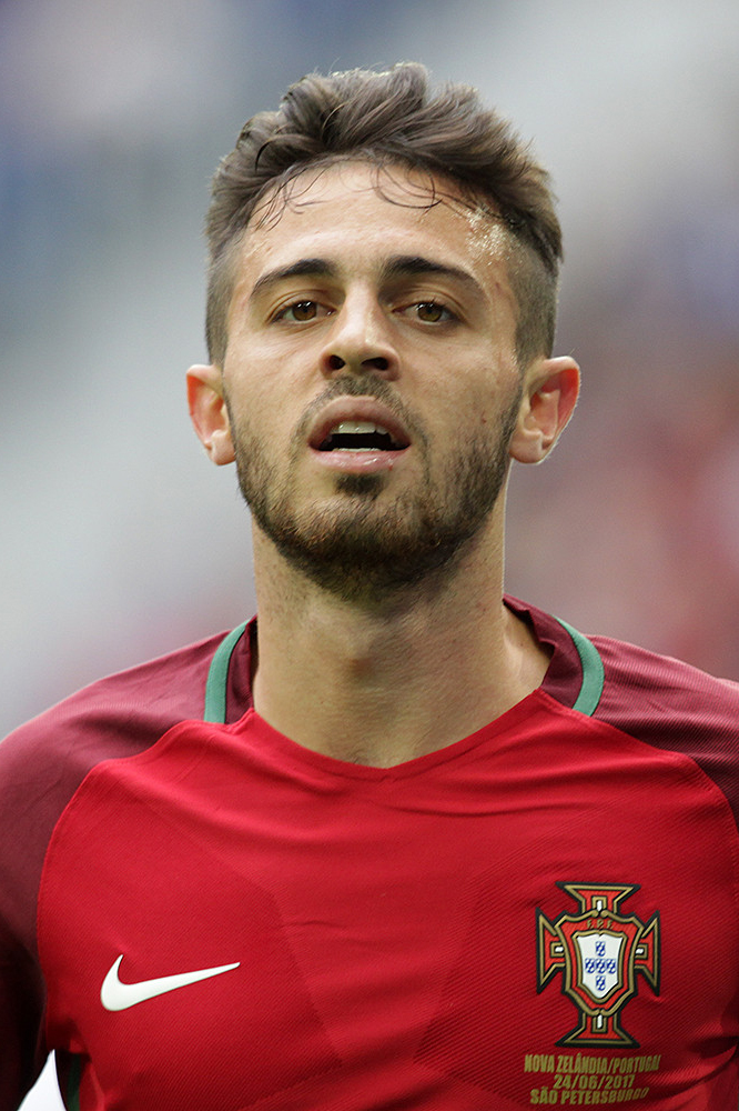 Bernardo Silva earned a  million dollar salary - leaving the net worth at 5 million in 2017