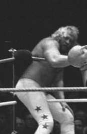 Image illustrative de l'article Big John Studd