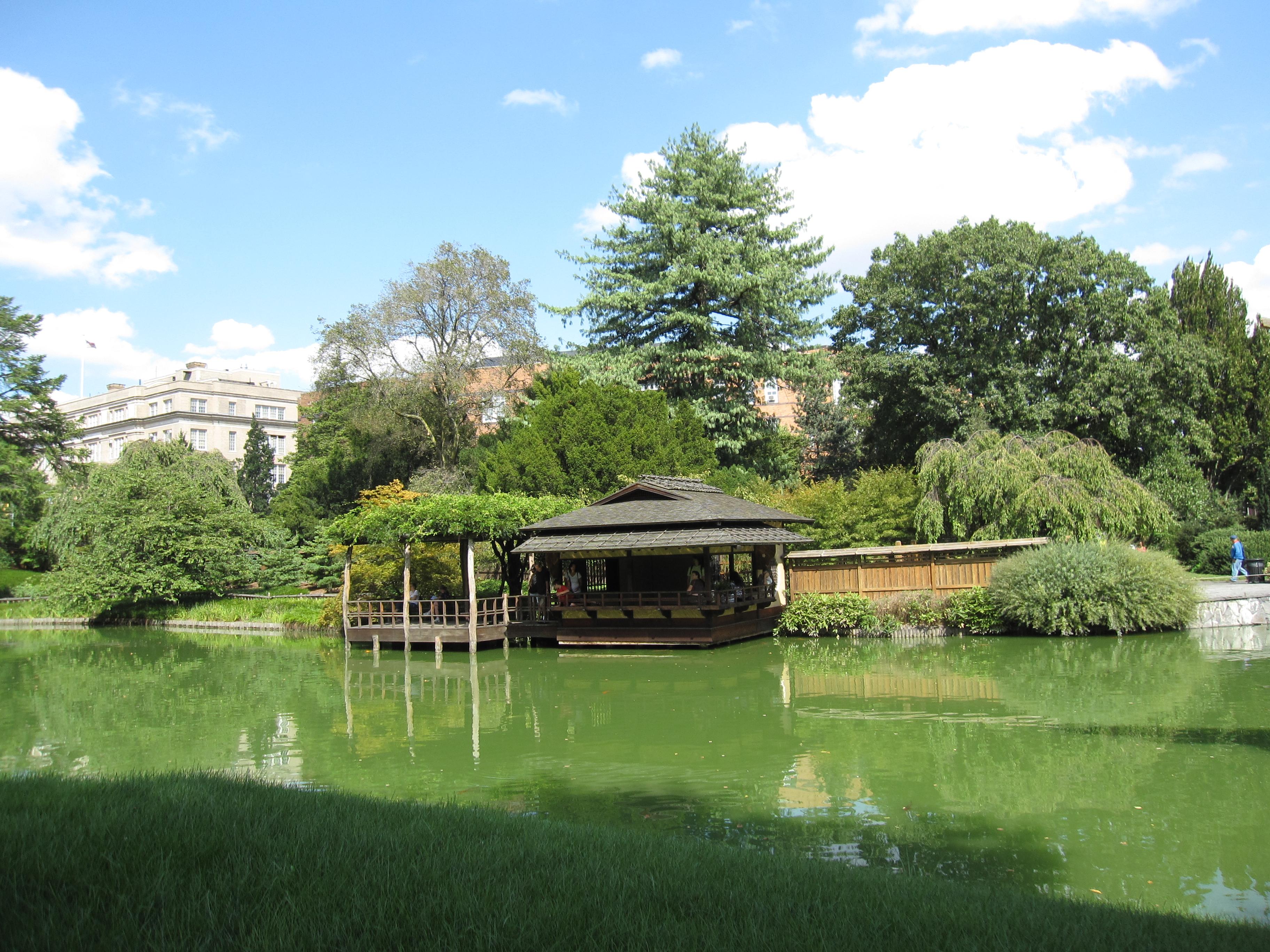 Garden in august in a garden - File Brooklyn Botanic Garden 6 Jpg