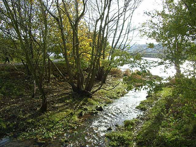 Creek at Tyne Riverside Country Park - geograph.org.uk - 1038622